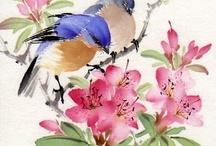 Prints - Birds