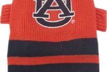 All Things Auburn / by Sandy Cone