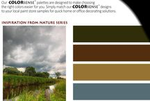 Rinehart COLORSense(TM) / Our COLORSense(TM) palettes are designed to make choosing the right colors easier for you.  Simply match our COLORSense(TM) designs to your local paint store samples, decorations and accent pieces for quick home or office decorating solutions