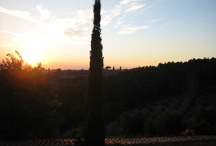Firenze en Toscana / Voor mij dé stad  en streek in Italië