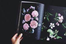 visual journal.