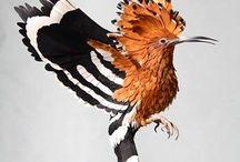 ptaki z papieru