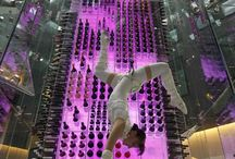 Wine Angel Acrobats / Wine angels, a new hotel trend, where acrobats are suspended and climb a glass wine tower to get your favourite bottle of wine. / by Sarah Jamerson