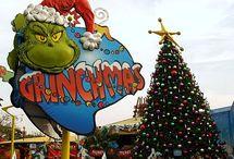 Florida, christmas 2014