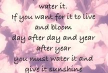 You r my sunshine :)