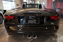 Jaguar / Be the envy of your friends and family with your very own Jaguar!