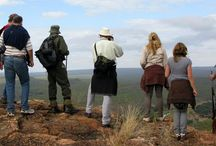 Natural Exposure Safaris / Safaris for people who want to experience, learn and explore.