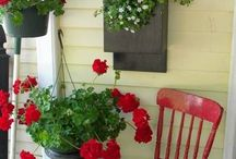 Shabby chic / In red