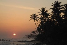 Beaches of Sri Lanka / Some of the worlds most beautiful beaches. Plus great surfing and whale watching.