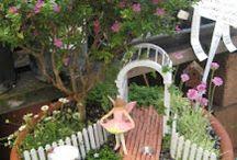 Fairy gardens / by Kathy Hogan Van Mullekom ...and friends:)