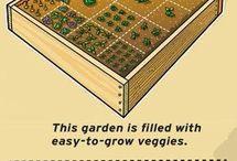 Trucs jardin