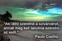 Bölcs
