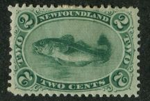 Fish and Marine Life on Stamps / The world of marine life is explored through its depiction on early and modern postage stamps