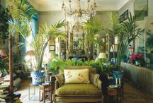 Pretty Rooms with Plants