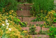 Steps, walkways, walls / Here you can find inspiration for step and path you can discover in the Edenpont gardens.