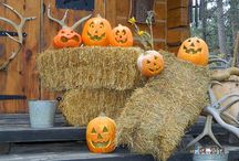 Autumn & Halloween : My most favorite time of the year !