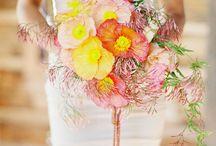 Wedding Stuff / by Amber Padilla