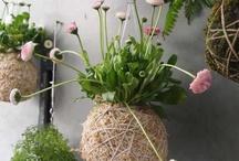 Flores e Folhagens