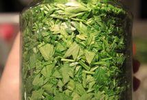 Petrezselyem zöld télire