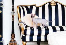 Furniture Love / by Tasha Price