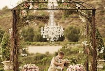Wedding ideas / by Jacqueline Lelli