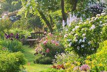 landelijke tuin - rural garden [inspiratie]