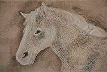 Equine/Horse Paintings