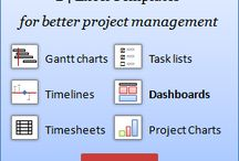 Project Management / Planning & Organising