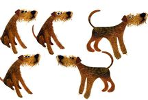 dogs, perros, cani
