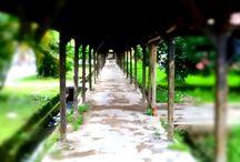 Lost / Hallway
