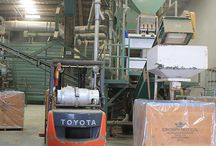 Our Processing Facility