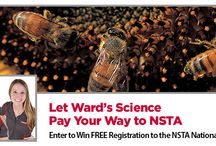 2014 NSTA National Conference /  2014 NSTA National Conference / April 3-6, 2014 / Boston Convention & Exhibition Center.  Attend Hands-on Workshops in Room #156A and Visit our Plus Us Team at Booth #632.  Pre-register for the workshops to win free science prizes, and stop by our booth for a chance to win a $1,000 Ward's Science Gift Certificate!  Check out all the activities at wardsci.com/conference