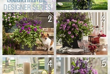Decorating Tips with Carmen Johnston / Carmen Johnston shares her expert how-to's on how to liven up your landscape, home and parties! / by Southern Living Plant Collection