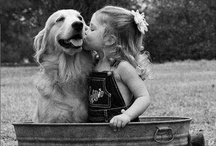 must love D♥GS (n CRITTERS) / by ❃✿❀ Sherry ❀✿❃