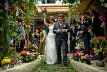 My Wedding! / Perfect day! Perfect weeding! Day weeding. Colorful.