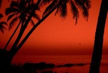 Goa Beaches / Beaches for what Goa is !