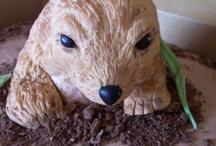 Groundhog Celebrations