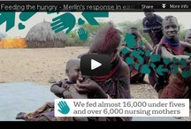 East Africa Food Crisis - One Year On / Twelve months since the food crisis in east Africa first hit the headlines, with millions of lives saved across Kenya, Ethiopia and Somalia, Merlin needs your help more than ever to make sure the region doesn't slip back into crisis.