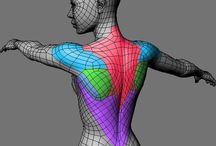 Modeling, Topology & Anatomy / All them good references and possibilities.