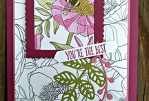 inside the lines  dsp stampin up