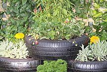 DIY Veg. Garden!!