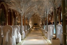 Winter forest wonderland - conference theme ideas