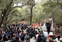Outdoor Wedding Ceremonies / A collection of outdoor wedding ceremony galleries to help engaged couples find the perfect venue and to get inspiration for their big day.