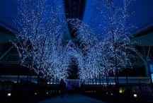 La belleza de Japón - Japón Entre Amigos / Descubre las mejores fotografías de Japón