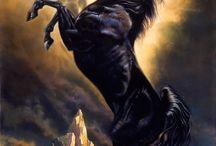 HORSE CURVET