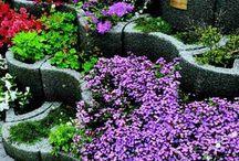 kert - magasított ágyás