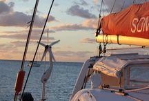 Sailing / Living and sailing on board a catamaran on the East Coast of Australia