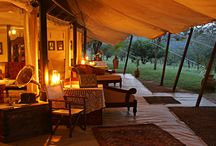 JOY SAFARIS - resorts I love / by Joy-Marie Butler