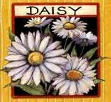 Daisies / by Connie McCool