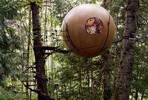 Family's Tree House